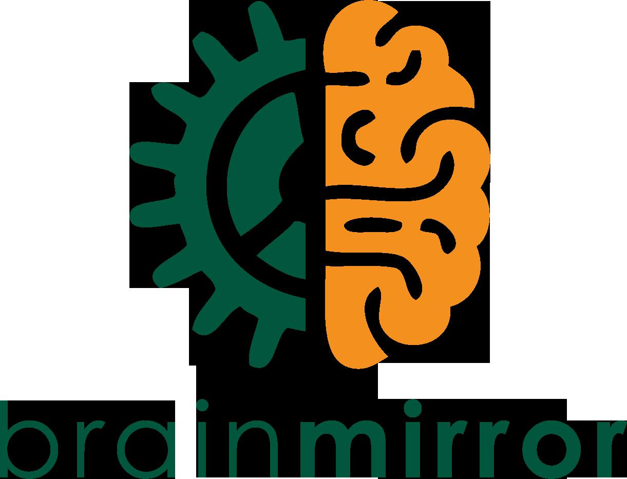 BrainMirror