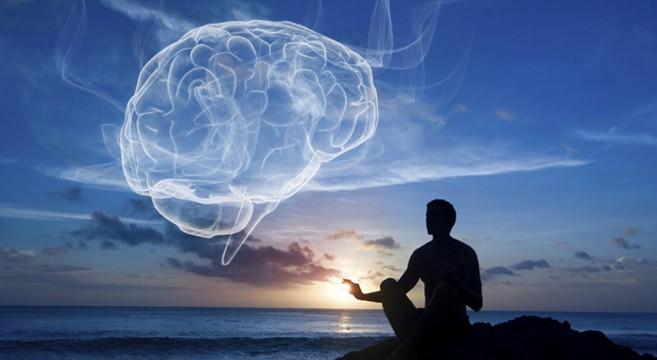 Wat doet Mindfulness met je brein?