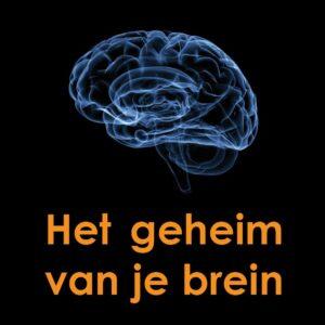 Geheim-van-je-brein e-book brain mirror