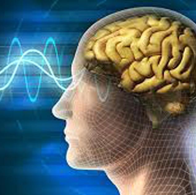 Proeftraining BrainMirror