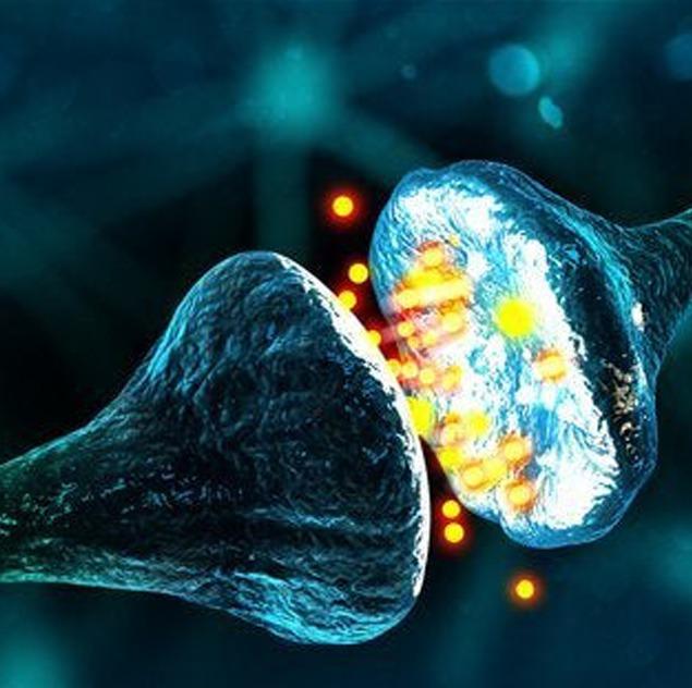 BrainMirror Breinbalanstest
