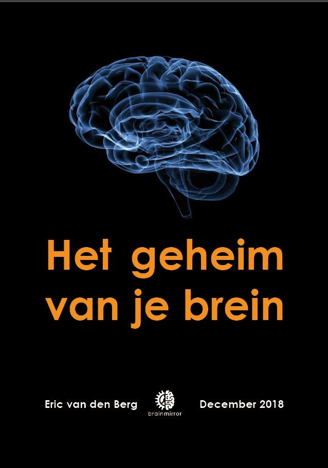 BrainMirror Het geheim